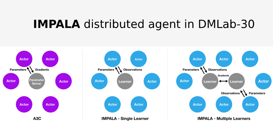 IMPALA distributed agent in DMLab-30