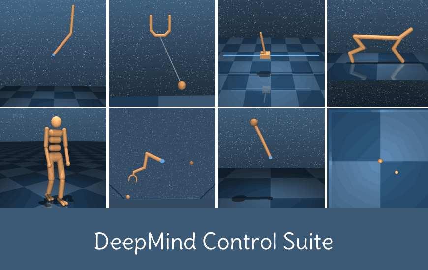 dm_control