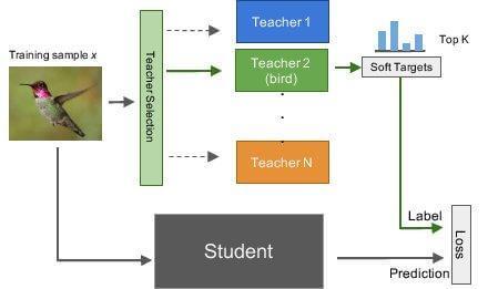 Multi-teacher Single-student Knowledge Distillation