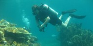 http://m.thegreatnext.com/Scuba Diving Scuba Diver Course Andamans Havelock Adventure The Great Next