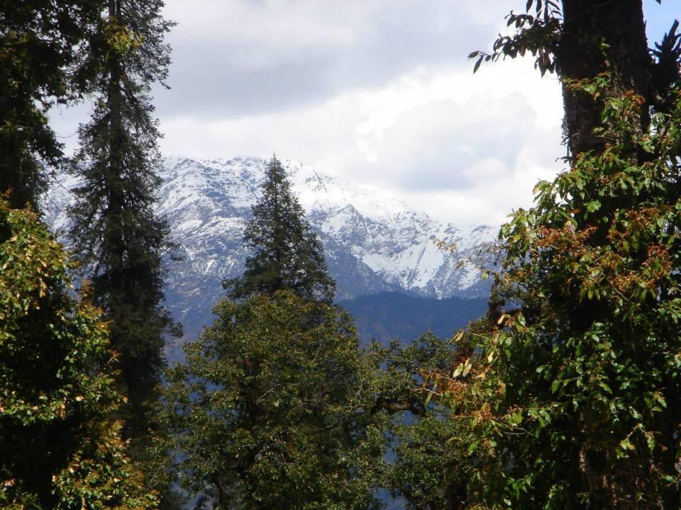 http://www.thegreatnext.com/Chopta Camping Uttarakhand Himalayas Rappelling Rock Climbing Tent Adventure The Great Next