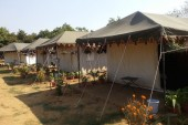 http://www.thegreatnext.com/Camping near Delhi Adventure Camp Gurgaon The Great Next
