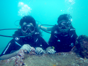 http://m.thegreatnext.com/PADI Open Water Diver Course OWD Goa Fish Scuba Diving Adventure The Great Next