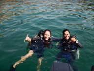 http://www.thegreatnext.com/PADI Scuba Diver Course Goa Scuba Diving Adventure The Great Next