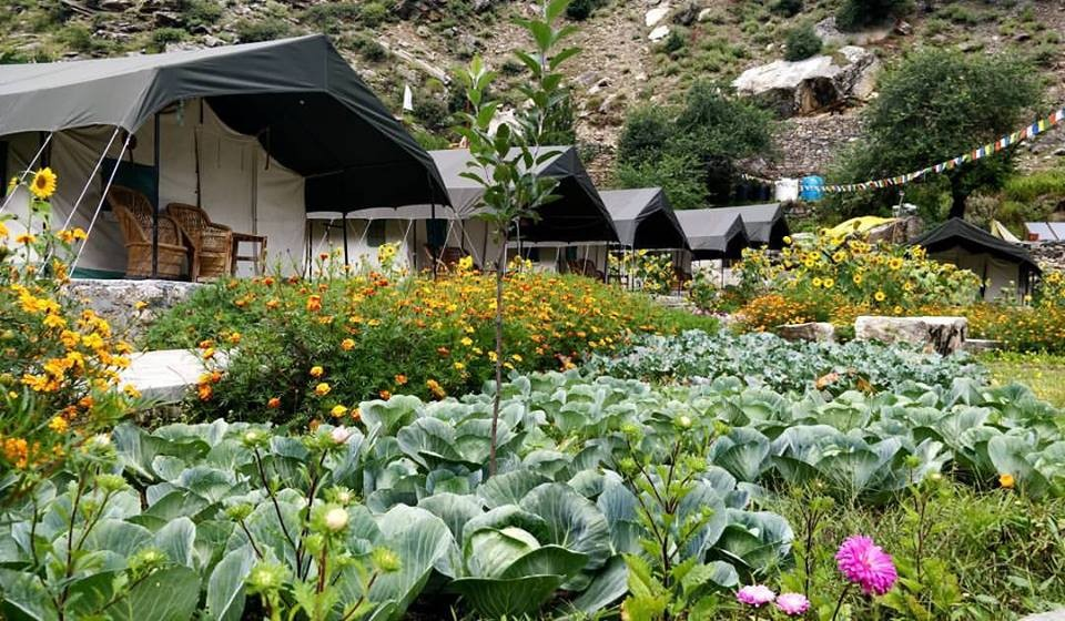 http://www.thegreatnext.com/Camping Sangla Kinner Himachal Pradesh Mountains Adventure Activity Sports Snow Fun