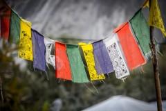 http://m.thegreatnext.com/Markha Valley Trekking Leh Ladakh Adventure Tour The Great Next