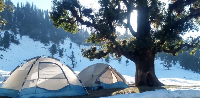 http://www.thegreatnext.com/Trekking Chopta Uttarakhand Chandrashila Deoriatal Adventure Activity Sports
