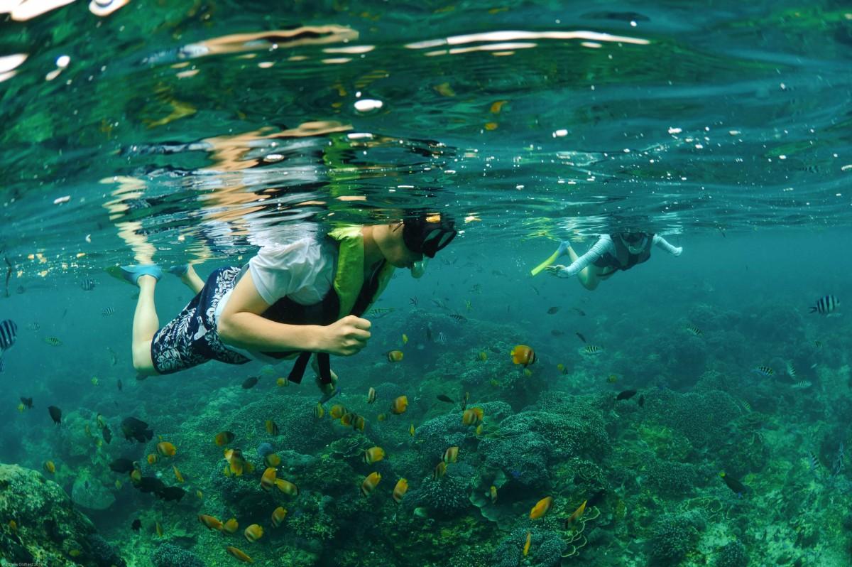 http://m.thegreatnext.com/Bali Diving Snorkelling Banana Boat Ride Fish Corals Scuba DIve The Great Next