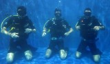 http://m.thegreatnext.com/SSI Open Water Diver Course OWD Bali Tulamben Padang Bai Amed The Great Next