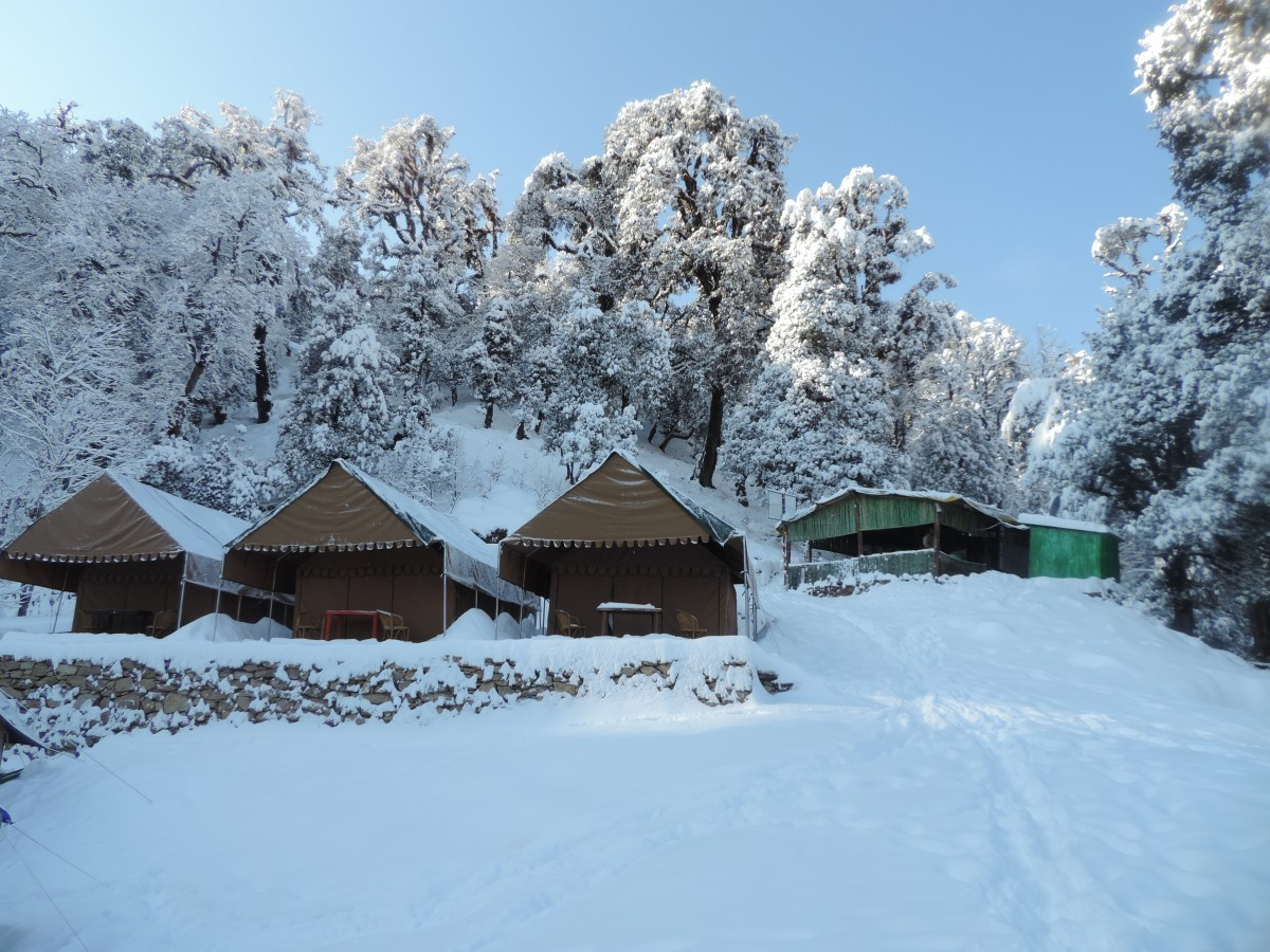 http://www.thegreatnext.com/Camping Chopta Uttarakhand Himalayas Camp Nature Adventure Activity