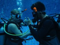 http://www.thegreatnext.com/PADI Open Water Diver Course Bali Indonesia Kuti Activity Adventure Travel Fun Water Sports