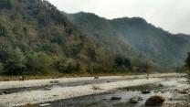 /Rishikesh Rafting Uttarakhand Adventure Travel The Great Next