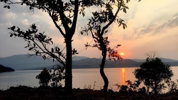 Fireflies Camping in Bhandardara