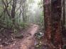 http://www.thegreatnext.com/Trekking Devkund Waterfall Mumbai Maharashtra Adventure Travel The Great Next