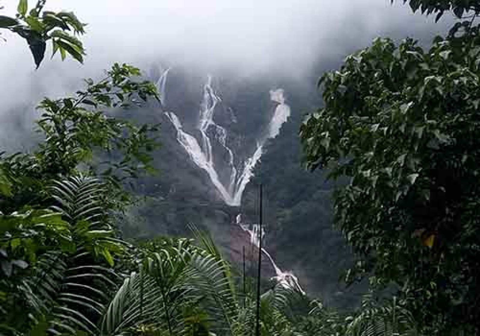 Trek to Dudhsagar Waterfalls (Ex-Pune)