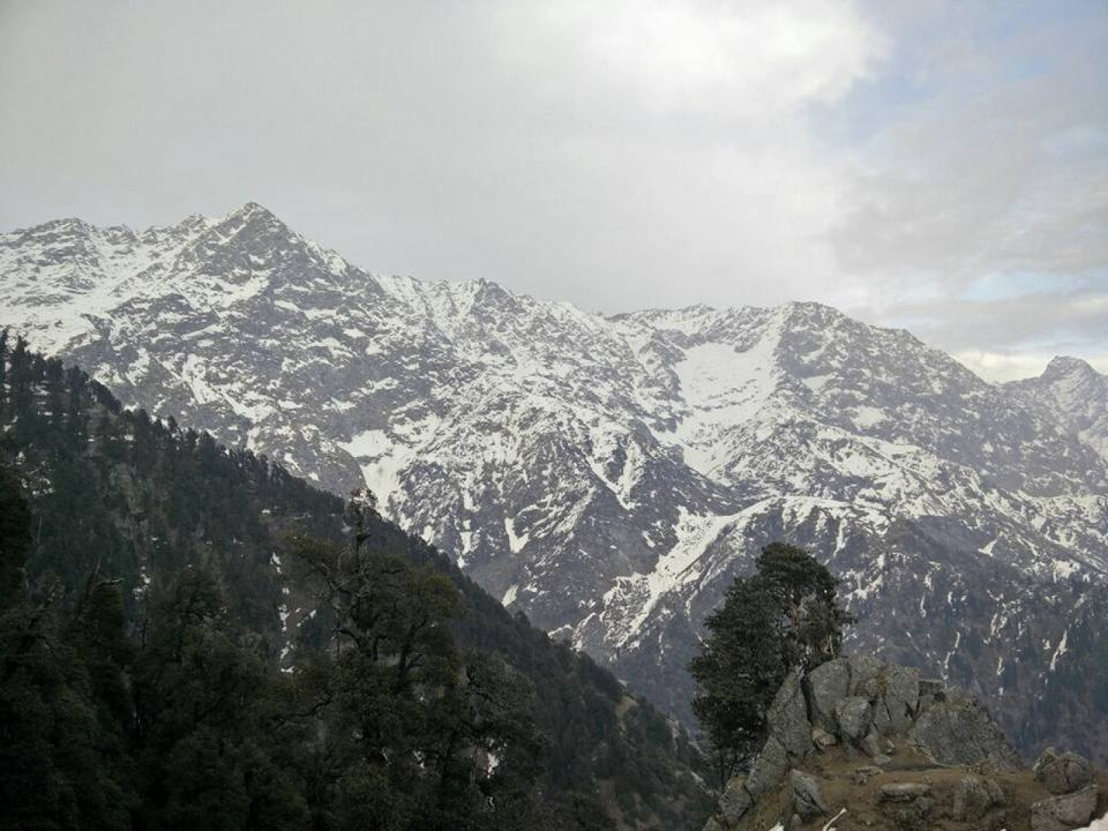 Snowline trek to Triund and Laka Got