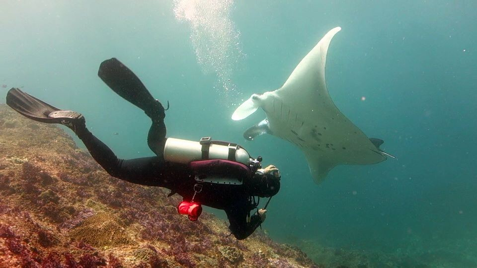 http://www.thegreatnext.com/Scuba Diving Bali Indonesia Adventure Travel The Great Next