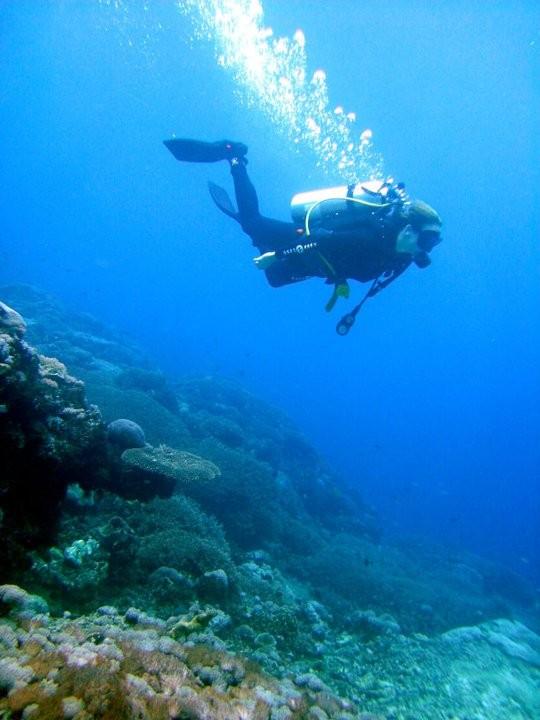 http://www.thegreatnext.com/Scuba Trip Discover Scuba Dive Bali Adventure Travel The Great Next