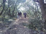 http://www.thegreatnext.com/Trekking Bhimashankar Mumbai Maharashtra Adventure Travel The Great Next