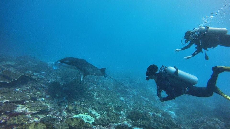 http://www.thegreatnext.com/Scuba Course PADI Advanced Open Water Diver Bali Adventure Travel The Great Next