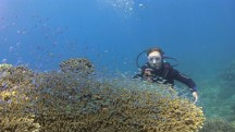 http://www.thegreatnext.com/Scuba Diving Course PADI Bali Open Water Diver Indonesia Adventure Travel The Great Next