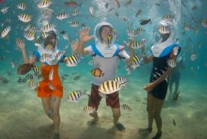 Reef Cruise and Sea Walk in Bali