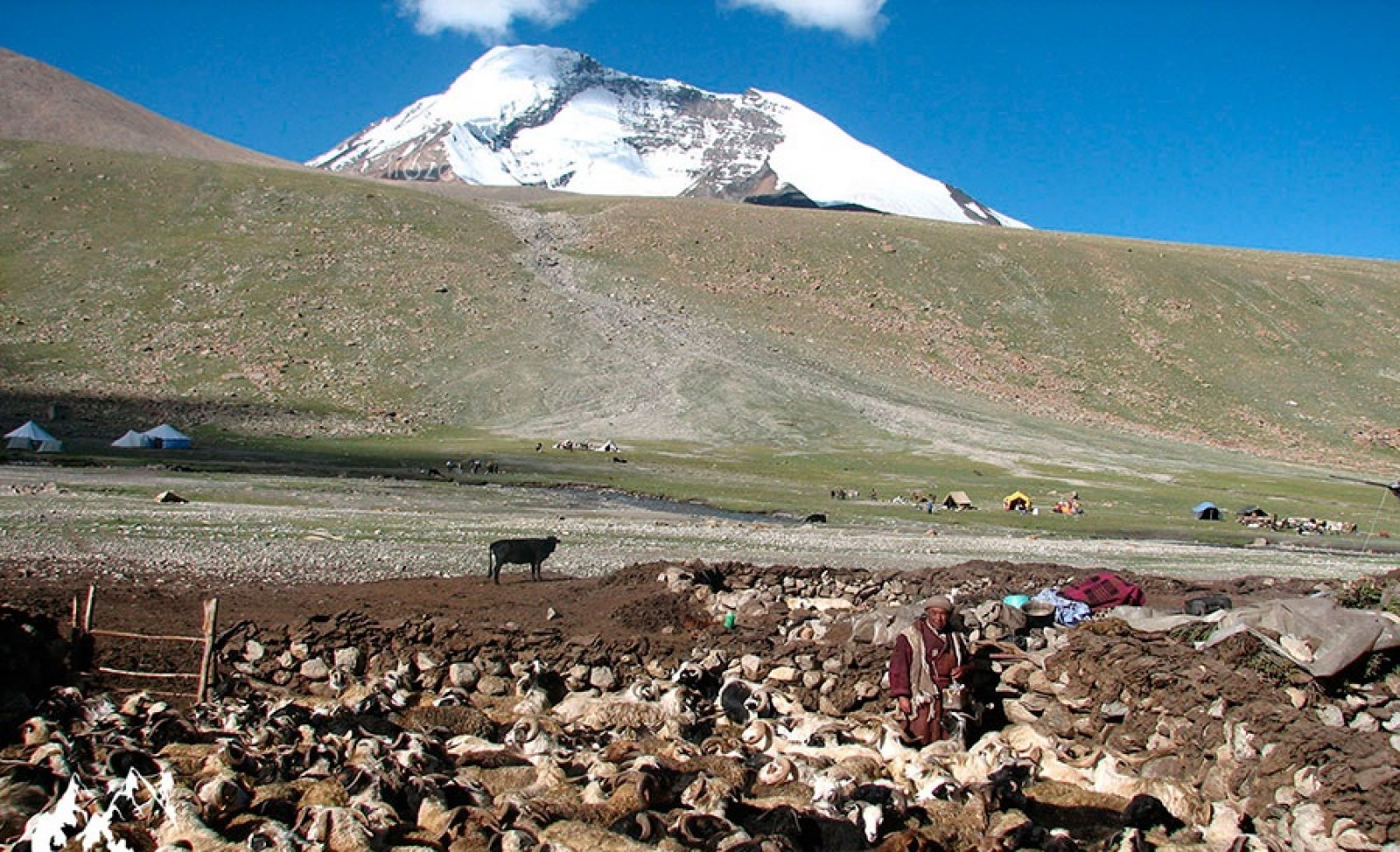 7-day Stok Kangri Trek