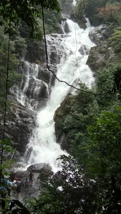 http://m.thegreatnext.com/Trekking Tambdi Surla Waterfall Maharashtra Adventure Travel The Great Next