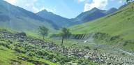 http://www.thegreatnext.com/Trekking Tarsar Marsar Jammu Kashmir Ladakh Adventure Travel The Great Next