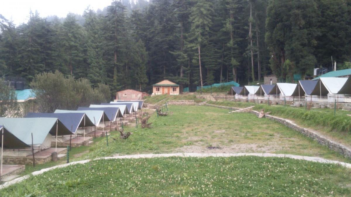 http://m.thegreatnext.com/Camping Shimla Himachal Pradesh Adventure Travel The Great Next