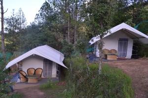 Camping near Nainital
