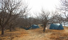 http://www.thegreatnext.com/Camping Thachi Valley Himachal Pradesh Adventure Travel The Great Next