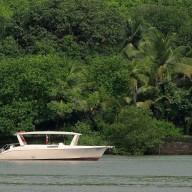 http://m.thegreatnext.com/Cruise Goa The Great Next Adventure Travel