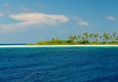 http://www.thegreatnext.com/Scuba Diving Liveaboard Maldives The Great Next Adventure Travel