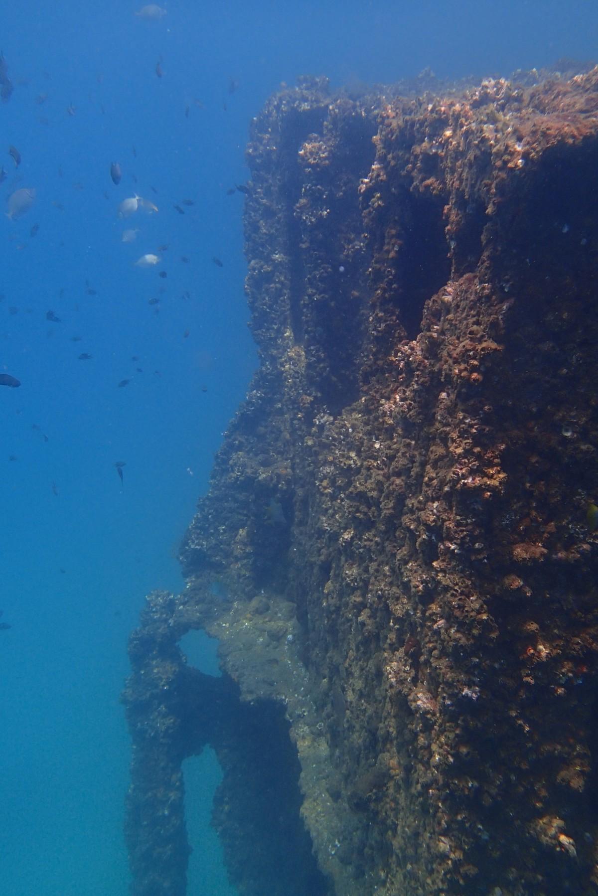 http://m.thegreatnext.com/Scuba Diving Goa Grande Island The Great Next Adventure Travel