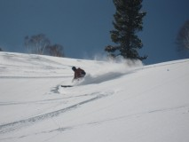 http://m.thegreatnext.com/Skiing Course Gulmarg Jammu Kashmir Adventure Travel The Great Next