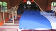 http://www.thegreatnext.com/New Year Camping Junga Himachal Pradesh Himalayas Adventure The Great Next