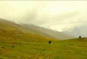 http://www.thegreatnext.com/Rupin Pass Trekking Himachal Pradesh Travel Adventure The Great Next