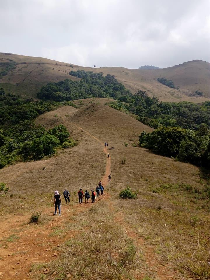 http://m.thegreatnext.com/Trekking Kodachadri Karnataka Bangalore Adventure Travel The Great Next