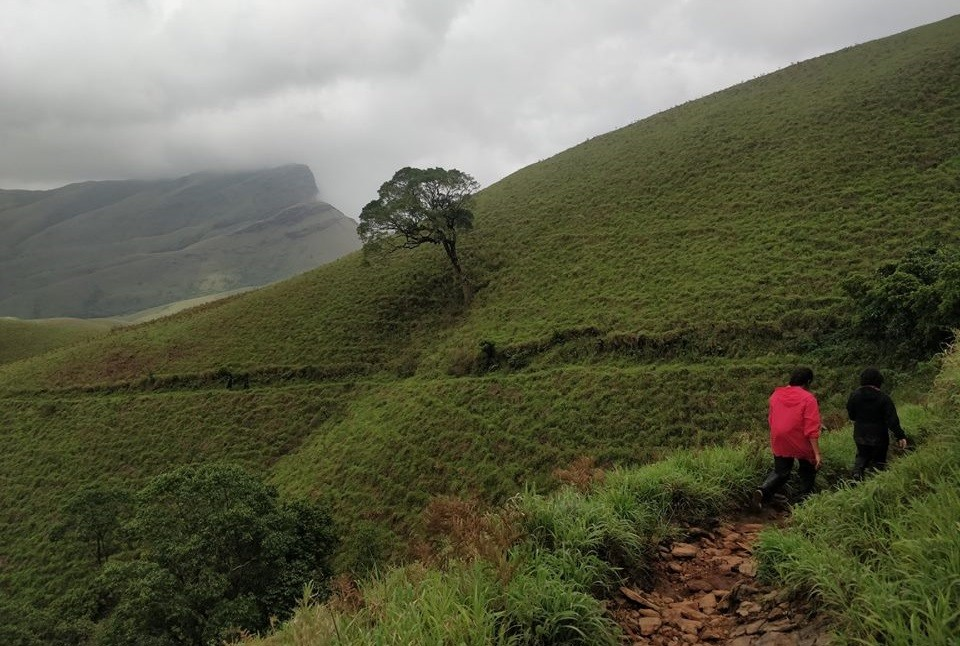 http://m.thegreatnext.com/Trekking Kudremukh Karnataka Bangalore Adventure Travel The Great Next