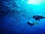 http://www.thegreatnext.com/Scuba Diving Nemo Reef Havelock Andaman Nicobar Adventure Travel The Great Next