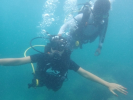 Shore Discover Scuba Dive at Sea Shell Reef