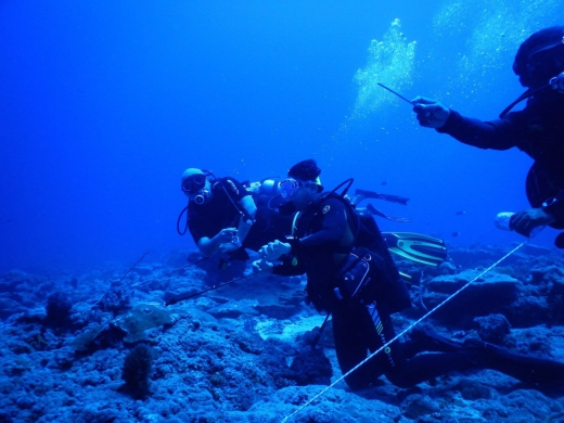 Andamans Fun Dive