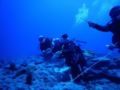 http://m.thegreatnext.com/Scuba Diving PADI AOWD Andaman Havelock Adventure The Great Next