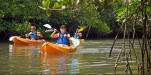 http://m.thegreatnext.com/Scuba Diving Snorkelling Kayaking Cycling Andaman Adventure Travel The Great Next