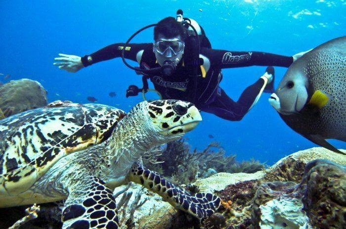 http://www.thegreatnext.com/Scuba Diving Snorkelling Kayaking Cycling Andaman Adventure Travel The Great Next
