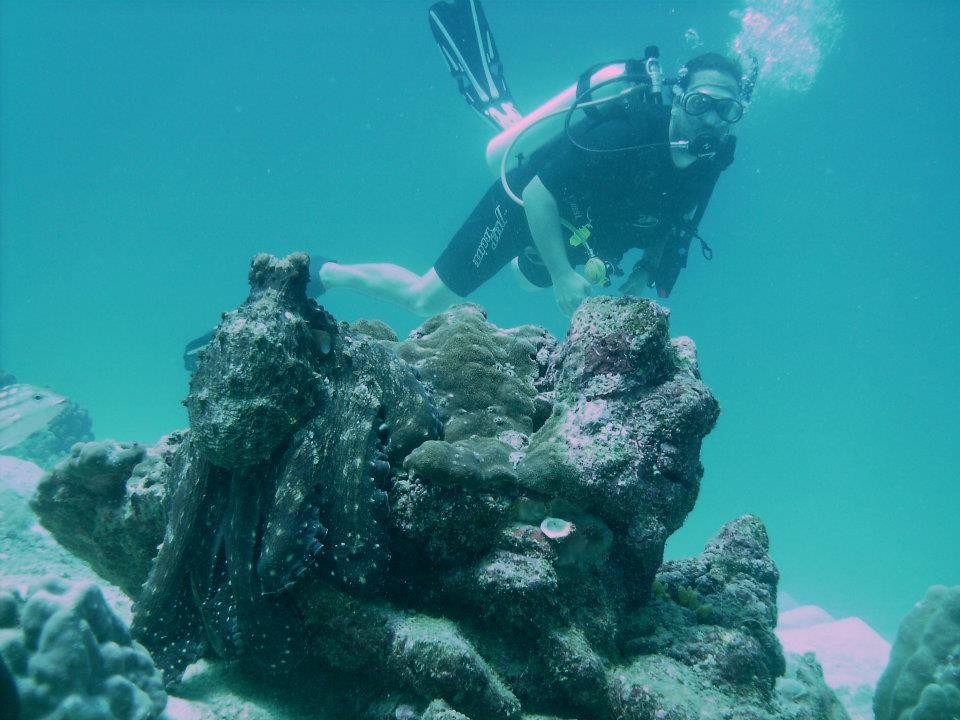 http://www.thegreatnext.com/Scuba Diving Ko Racha Yai Thailand Adventure Travel The Great Next