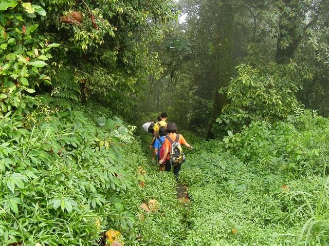 http://www.thegreatnext.com/Trekking Chidiya Tapu Andaman Adventure Travel The Great Next