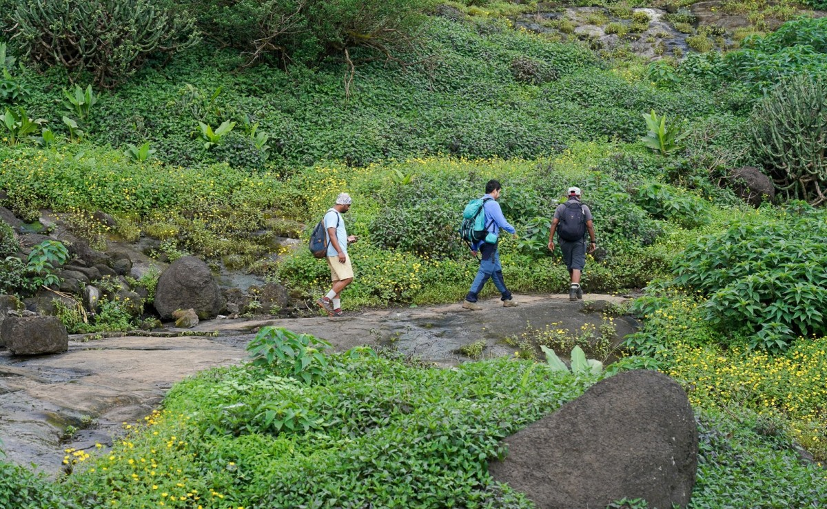 http://www.thegreatnext.com/Trekking Harishchandragad Maharashtra Adventure Travel The Great Next