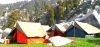 http://www.thegreatnext.com/Trekking Triund Mcleod Ganj Himachal Pradesh Adventure Travel The Great Next